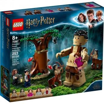 Конструктор LEGO Harry Potter Запретный лес: Грохх и Долорес Амбридж 75967